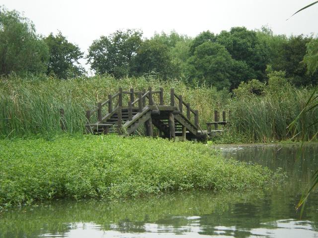 杭州西溪湿地旅游住宿美食攻略