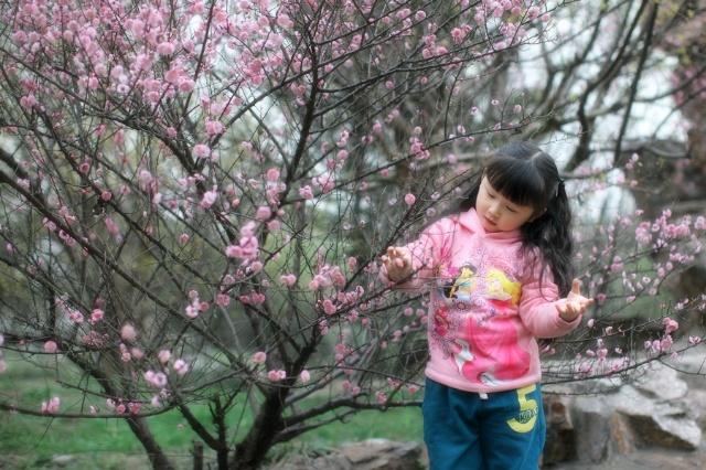给你一朵小花花表情包分享展示图片