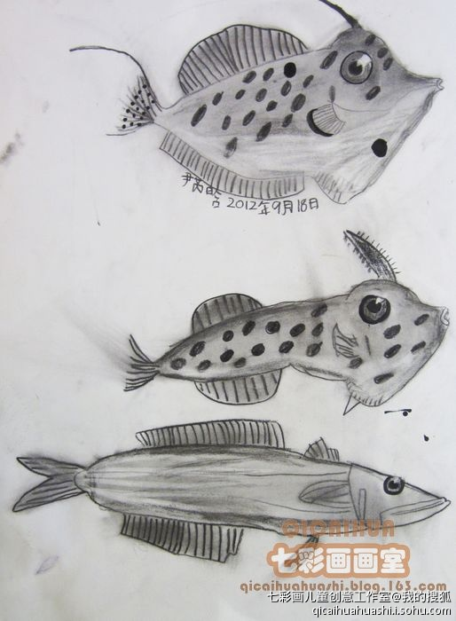 素描画鱼的步骤