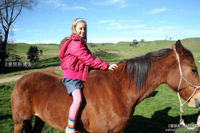 实拍新西兰女孩热衷的运动--马术(组图)