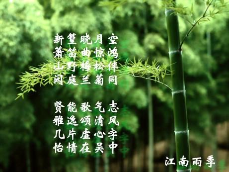 竹舞葫芦丝简谱