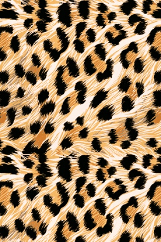 iphone壁紙--------大豹紋兒