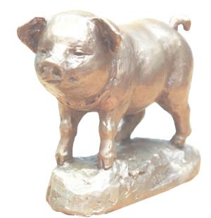 超级可爱的小猪