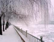 冬天里的经济危机