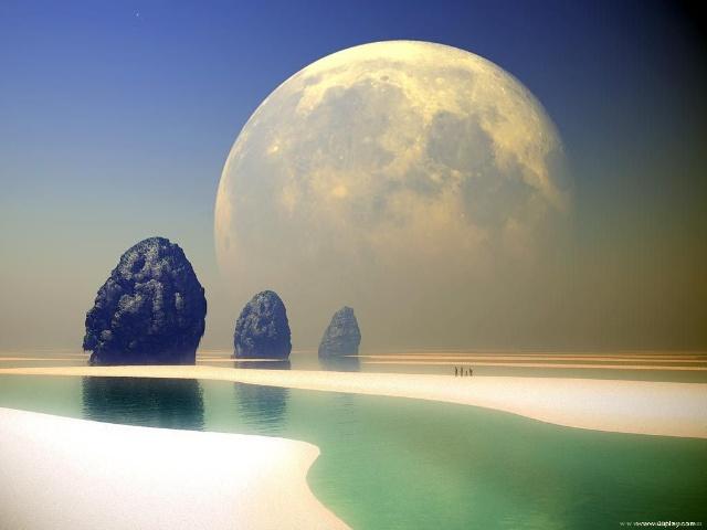 和平与平和   蔷薇   我热爱和平渴望和平却更崇尚平和....