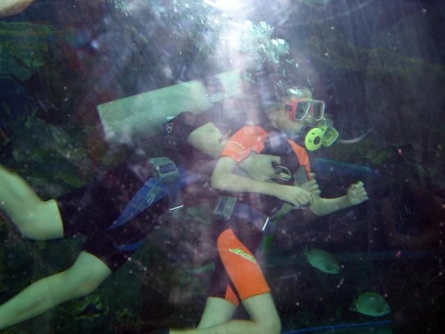 20091004抚顺皇家极地海洋馆游玩(照片)第一次体验潜水(视频)