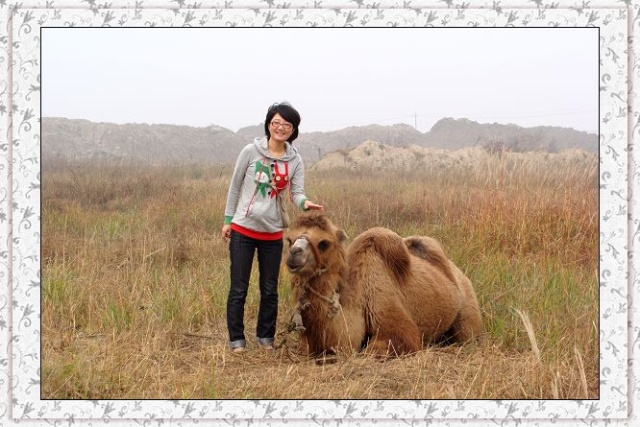 小骆驼笑起来真可爱.它吻了女儿一下,可惜没抓拍到.