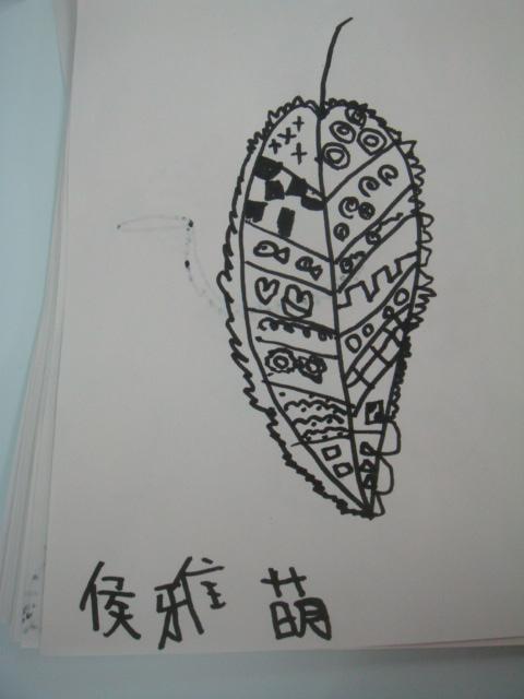 """""""神奇的树叶""""之线描画作品展示"""
