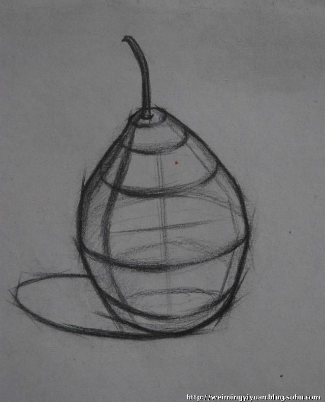 怎么画好素描结构线图片