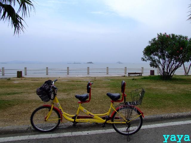 环岛路上的双人自行车
