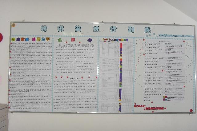 小学板报设计图 森林展示