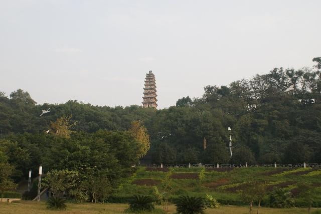 江东公园对面是白塔公园