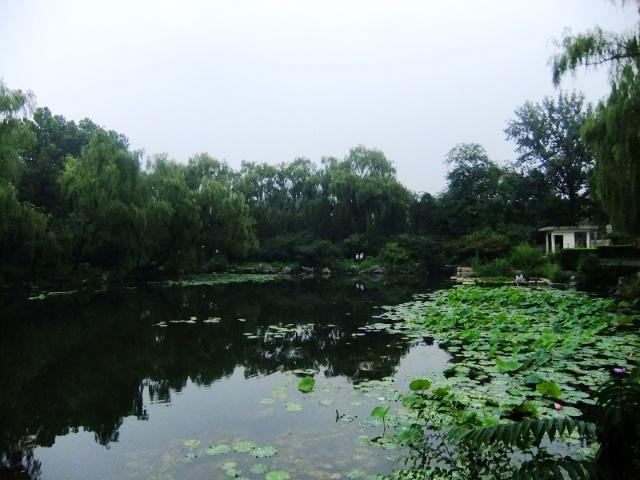水木清华园 - springran的博客