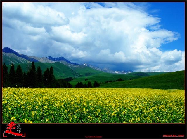和你一起看草原 五