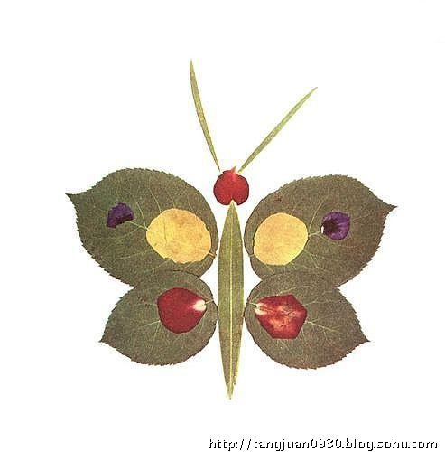 用枫叶做玫瑰花,漂亮的树叶拼贴画(组图)-唐朝的一块