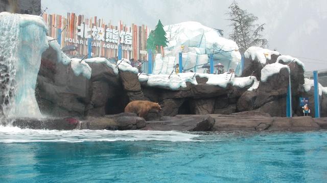 在模拟探险馆里体验北极冰雪世界,憨态可掬的动物,处处带给人从未有过