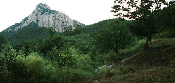 莲花山森林公园景区位于北京市延庆县东南大庄科