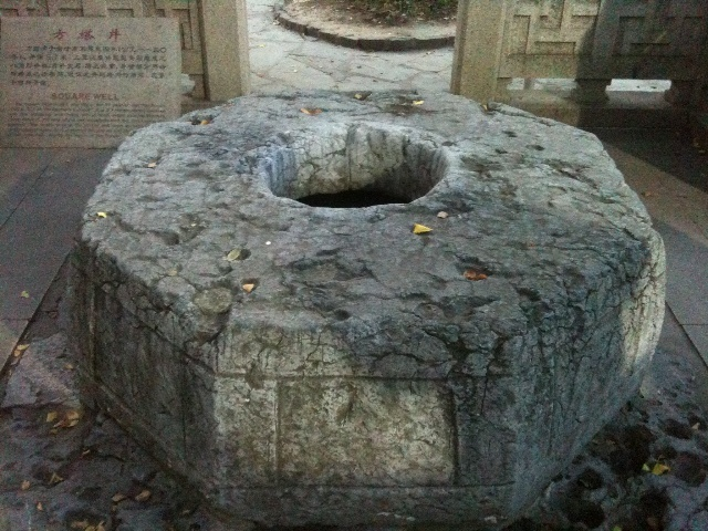 方塔公园三宝之——古银杏
