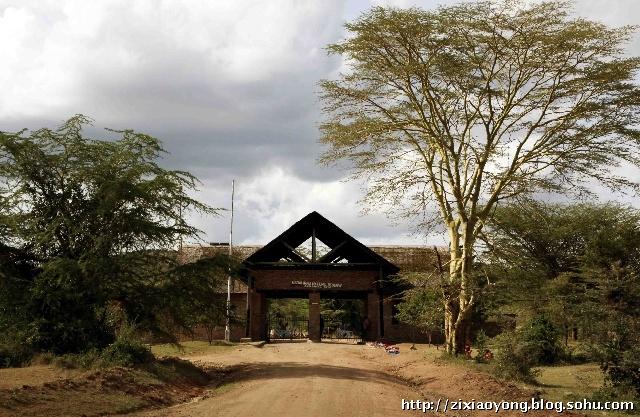 马赛马拉野生动物保护区大门