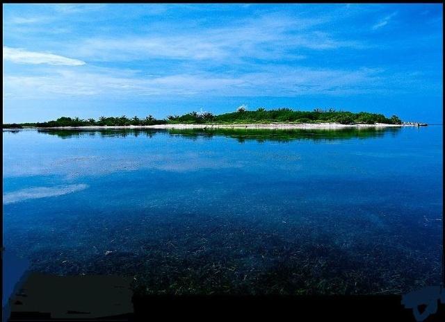 南海之珍——东沙群岛