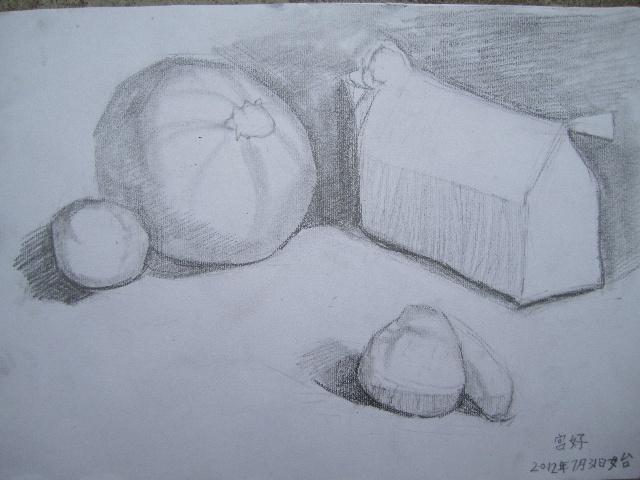 2012年7月31日工笔 素描 油画 静物写生 沐沐树 郭沐 搜狐