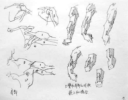 艺用人体结构-冷 梅-搜狐博客